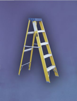 EN131 TRADE FIBREGLASS 10 STEP LADDER 3M